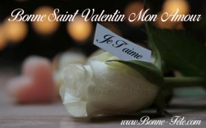 bonne Saint Valentin mon amour