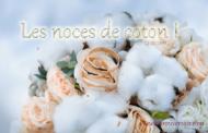1 an de mariage: Les noces de coton